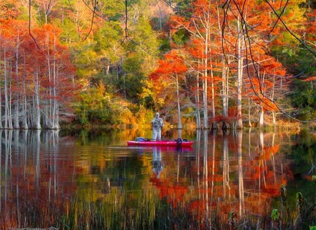 Fine Fall Fishing - ID: 5850925 © Carolyn  M. Fletcher