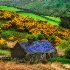 © Anne Marie Hickey PhotoID# 6509131: Irish Cottage