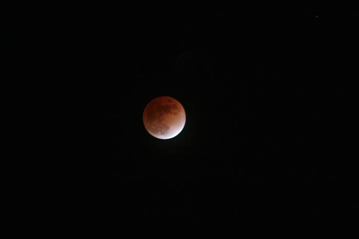 Lunar Eclipse - ID: 7363217 © Farrin Manian