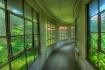 Ellis hallway