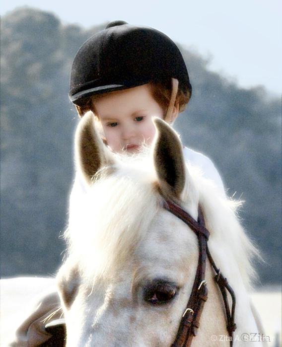 Angel on horseback - ID: 7840719 © Zita A. Strother