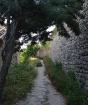 Poppy Walk, Lacos...