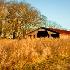 © Karol Grace PhotoID# 9087930: Abandoned Dairy Barn