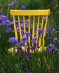 Yellow chair in i...