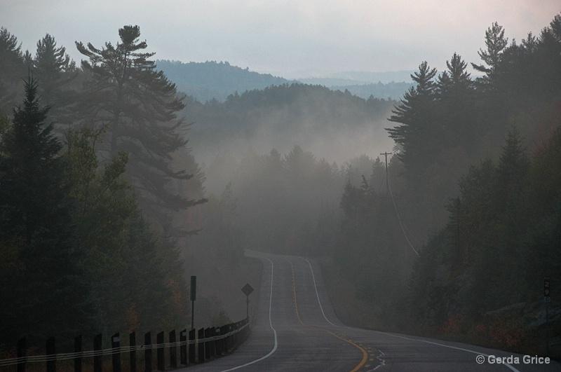 Into the Mist - ID: 9389088 © Gerda Grice