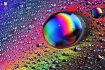 Rainbow Water Dro...