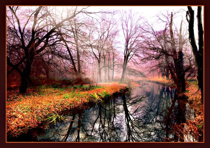 Autumn Fog - ID: 9448939 © William Greenan