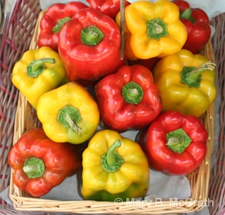 Peppers - ID: 9613397 © Mary B. McGrath