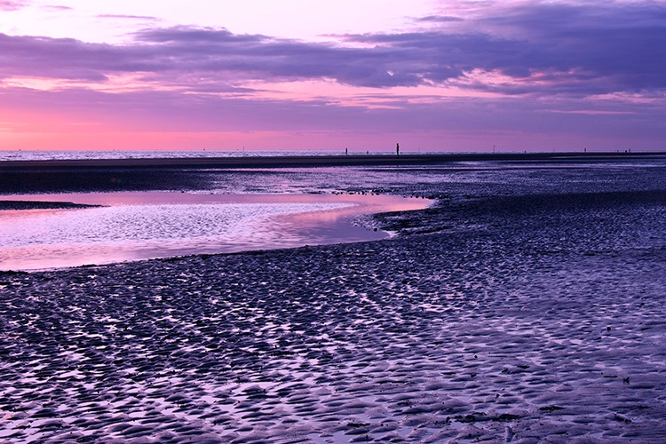 Late Evening at the Beach - ID: 10393657 © Susan Gallagher