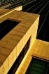 Sunlit Building