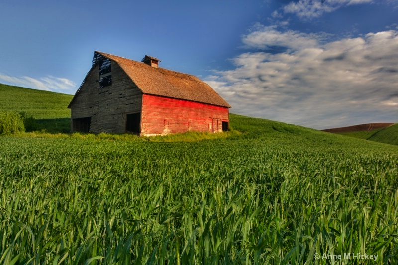 The Red Barn - ID: 11877651 © Anne Marie Hickey