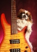 smokin' bass
