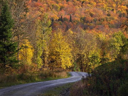 North Country Road