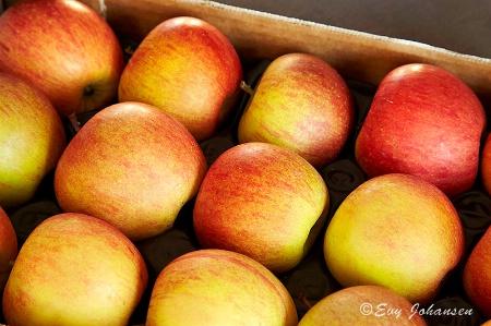 Blushing Winter Apples