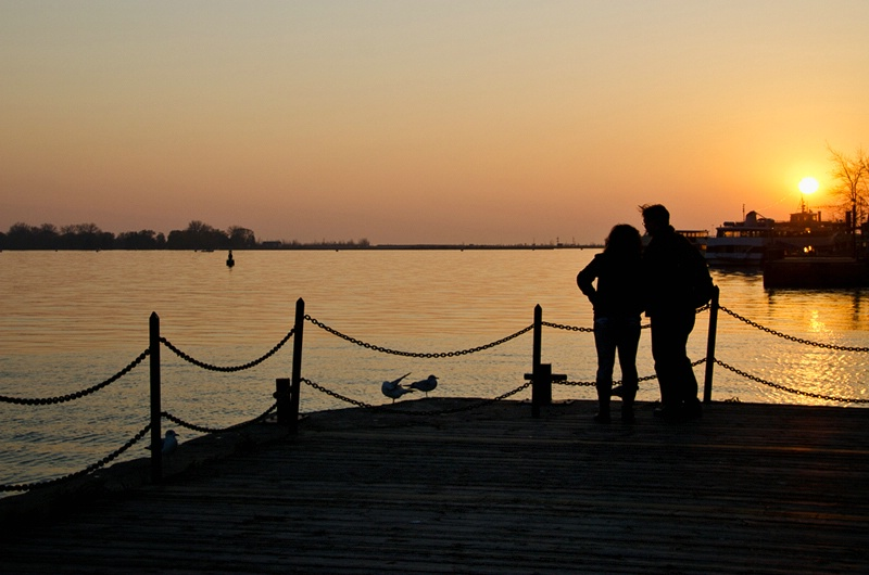 Gulls and Young Lovers at Harbourfront - ID: 12672805 © Gerda Grice