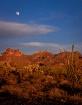 Arizona Desert Mo...