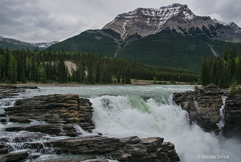 The Top of Athabaska Falls, Alberta - ID: 13960766 © Gerda Grice
