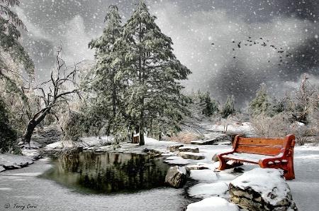 Winter Flurry