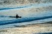 Kayaker Returning...