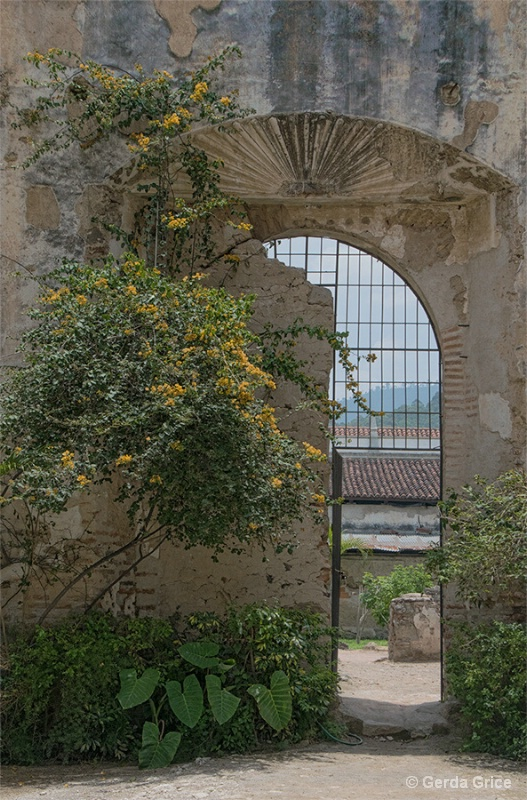 Arched Gate in Ruins of Santo Domingo - ID: 14927615 © Gerda Grice