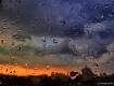 rainy urban sunri...