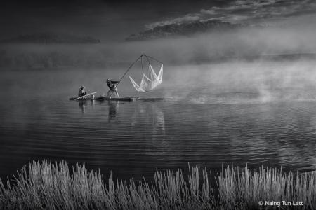 July 2019 Photo Contest 1st Place Prize Winner
