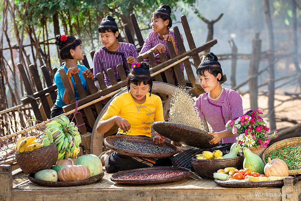 The Village Girls