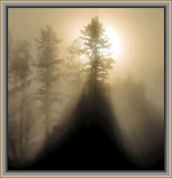 Morning Misty Light