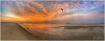 LBI Sunrise 8-5-1...
