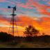 © Ravi S. Hirekatur PhotoID # 15742798: Sunrise on a Farm