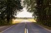 Curvy Road Under ...
