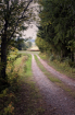 Gravel Road By Th...