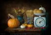 Harvest Still Lif...
