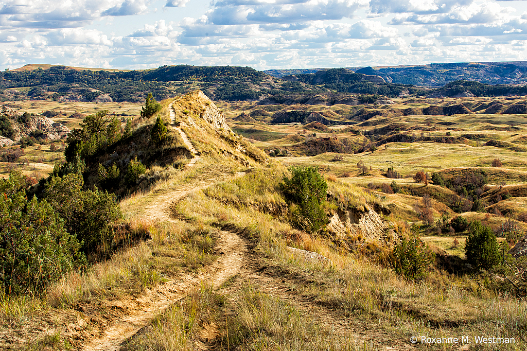 Overlook Boicourt overlook North Dakota badla - ID: 15752017 © Roxanne M. Westman