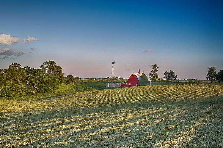 Summer 19 7025 - ID: 15756167 © Raymond E. Reiffenberger