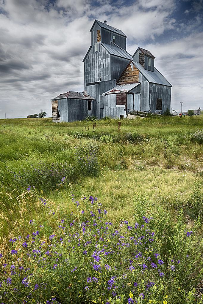 Hills 19 7762 - ID: 15756180 © Raymond E. Reiffenberger