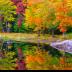 © Jeff Robinson PhotoID # 15756333: The Artist and Her Canvas