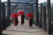 Myanmar novices