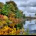 © Edward v. Skinner PhotoID# 15767673: Trees and pond