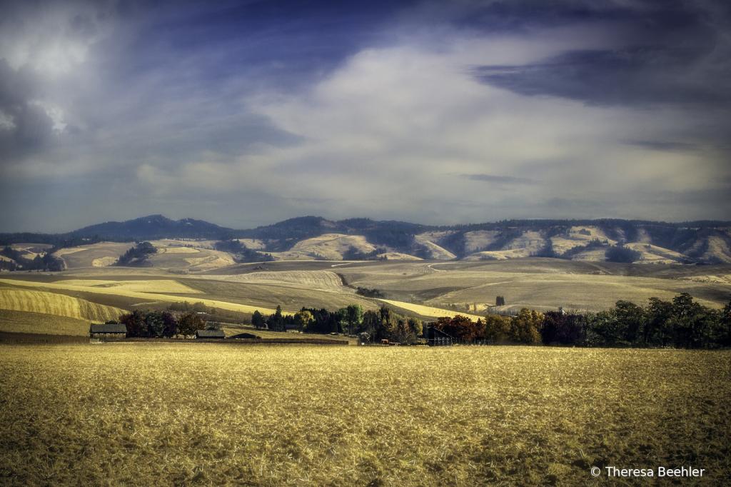 Landscape - Blue Mountains of Walla Walla - ID: 15775907 © Theresa Beehler