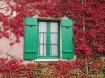 Autumnal Shutters