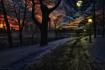 Moonlit Winter Wa...