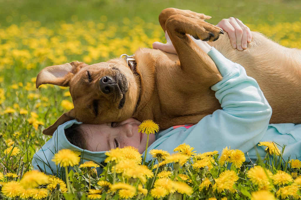 December 2019 Photo Contest Grand Prize Winner - A Girl and her Dog