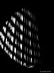 Lampshade Shadows...
