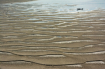Beautiful Sandban...
