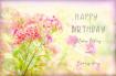 Happy Birthday Fl...