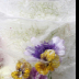 © Krista Cheney PhotoID# 15796892: Pansy and violas in ice