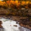Falls Rush