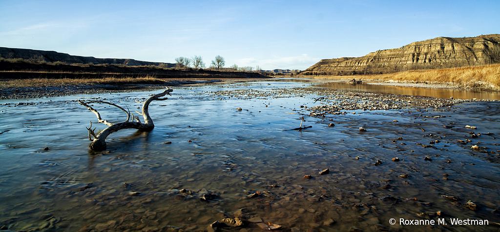 Little Missouri river TRNP - ID: 15809531 © Roxanne M. Westman