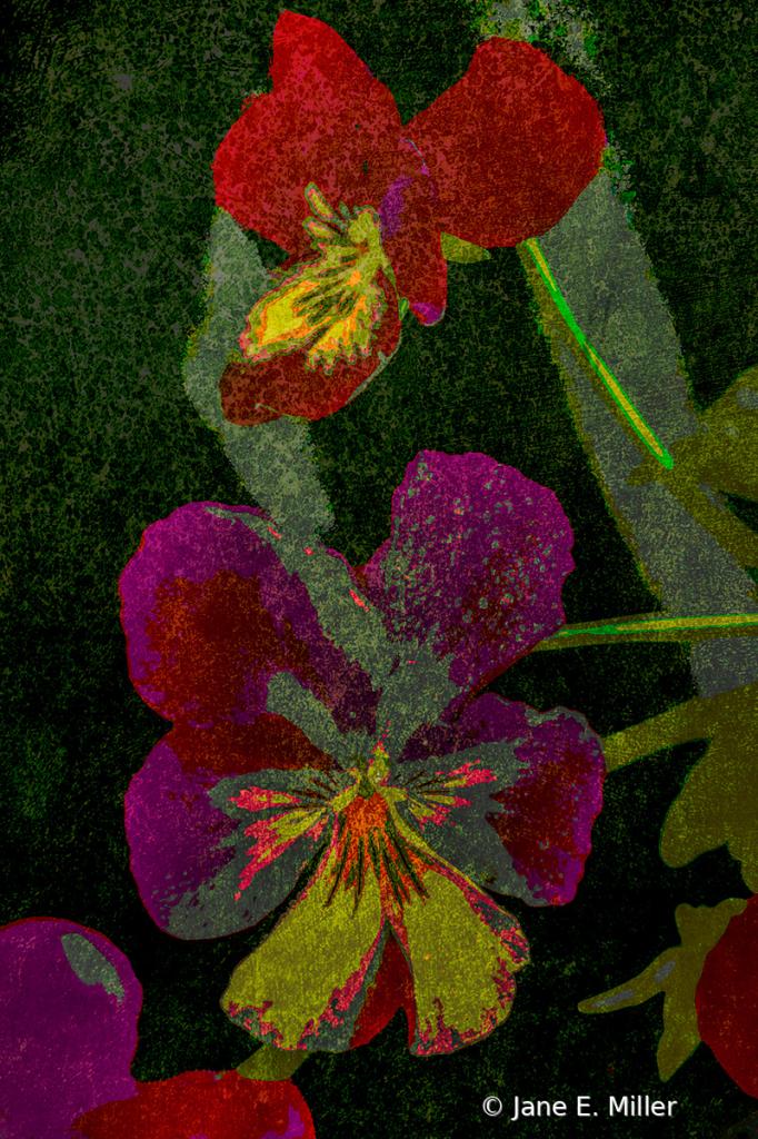 Floral Beauty!